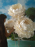 Пионы белые на стойке. Большие ростовые цветы из изолона.