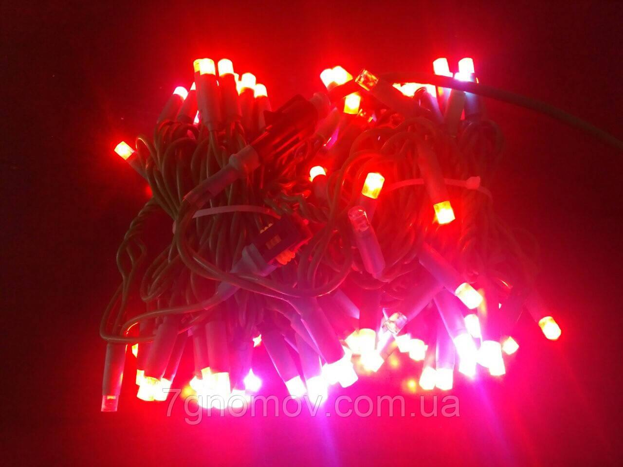 Гірлянда світлодіодна Flash-String зелений кабель червоний з холодним білим флешем 10м 100 діодів 220В
