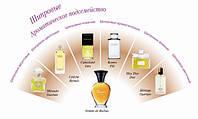 Ароматы: ваш гид в мире запахов