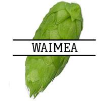 Хмель Waimea (NZ) 2018 - 100г