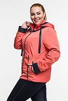 Donna-M куртка Вика, фото 1