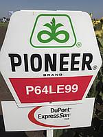П64ЛЕ99 (P64LE99) Пионер под Гранстар семена подсолнечника высокоурожайный засухоустойчивый
