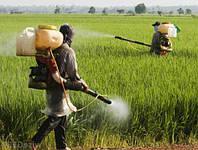 Вносим гербицид и инсектицид на Рапс