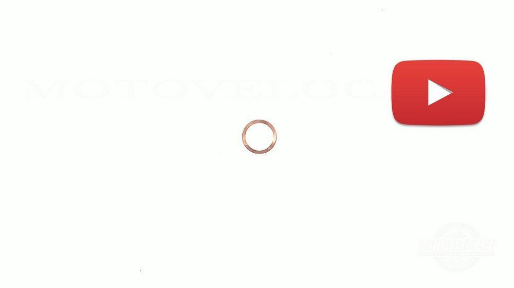 Прокладка головки цилиндра   КАРПАТЫ   (медь)   CJI, шт