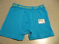 Детские трусики боксеры фулликра для мальчиков  2,4,6  8 , производство Турция, фото 1