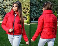 Куртка женская 262вд