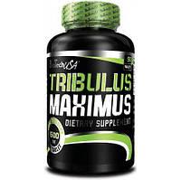 Бустер тестостерона Tribulus Maximus 90 капс.