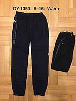 Спортивные утепленные штаны для мальчика оптом, F&D, 8-16 лет,  № DY-1053, фото 1