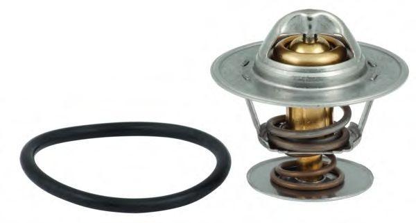 Термостат VW TRANSPORTER 90-03, LT 28-46 96-06 (87град.) Rider