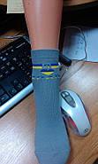 Носки детские демисезонные Мисюренко 18 размер                                                      , фото 2