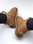 Натуральные женские угги UGG Australia UGG Classic Mini Chestnut. Живое фото. Люкс реплика, фото 7