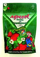 Agrecol Удобрение для клубники и малины 1 кг