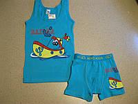 Детские комплекты машинки  с боксерками для мальчиков 2-10  ,Турция, фото 1