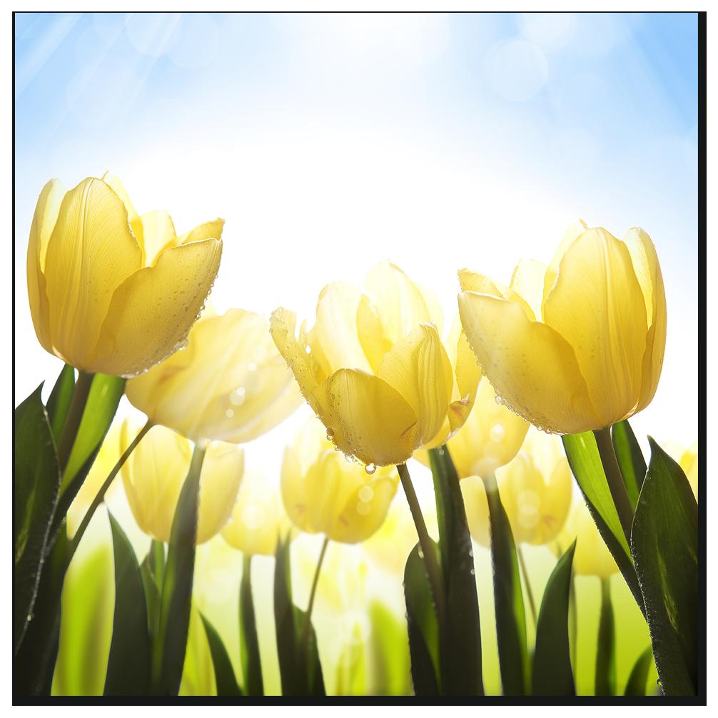 """Картина на стекле """" Желтые тюльпаны """""""