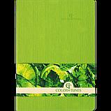Блокнот деловой COLOR TUNES А5 96л. чистый, иск. кожа, салатовый, фото 2