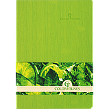 Блокнот ділової COLOR TUNES А5 96арк. чистий, позов. шкіра, салатовий, фото 2