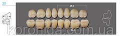 Планка жевательных нижних зуб. KAILI 30ML D2