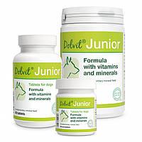 Витаминно-минеральная добавка для собак Dolvit Junior Mini , 90 таб. (витамины)