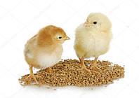 аминовитан для птицы инструкция