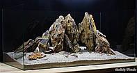 Композиция для аквариума из Дракона, фото 1