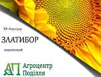 Семена подсолнечника Златибор 109-112 дн. (новинка 2018г.! устойчевый к 7 расам заразихи A-G+)