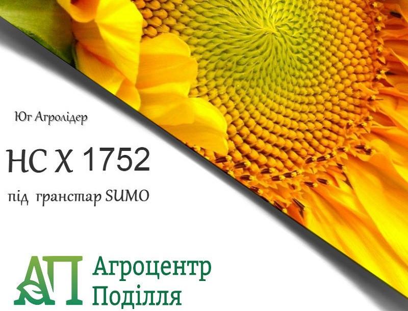 Семена подсолнечника НС Х 1752 под Гранстар 102-105 дн. Юг Агролидер