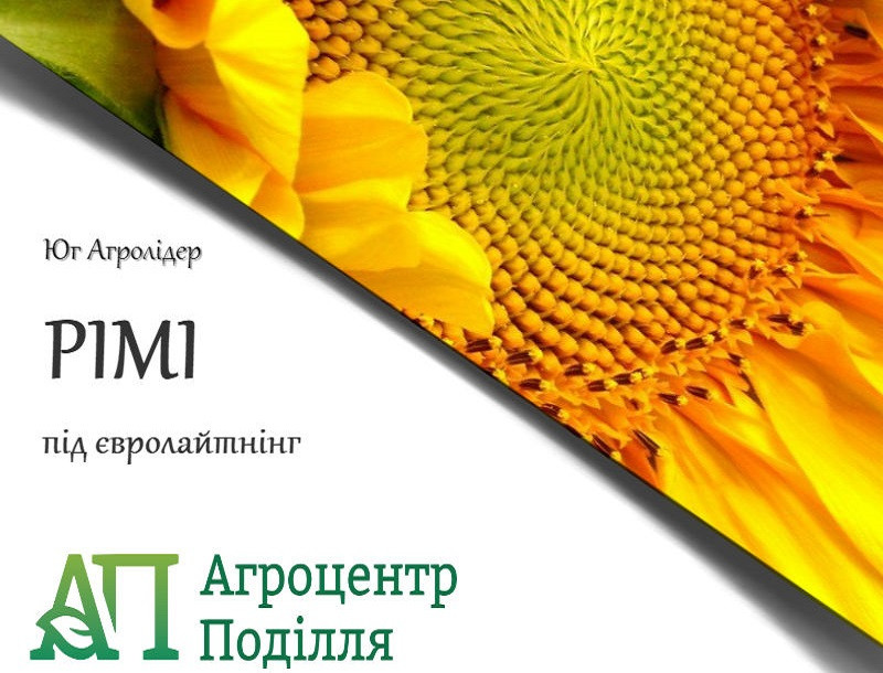 Семена подсолнечника под евролайтинг РИМИ (ІМІ) 108-112 дн.
