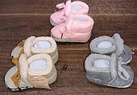 Детские тапочки для девочек оптом,Aura.via, 0/6-12/18 мес.,арт.BM1672, фото 3