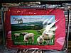 """Одеяло полуторное """"Королева снов"""" овечья шерсть чехол сатин, 150х210см, расцветка в ассортименте - Фото"""