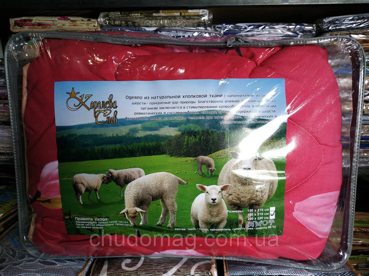 """Одеяло полуторное """"Королева снов"""" овечья шерсть чехол сатин, 150х210см, расцветка в ассортименте"""