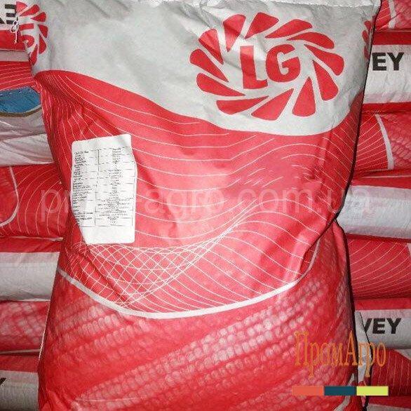 Семена кукурузы Limagrain LG 2195 ФАО 190 посевной гибрид кукурудзы Лимагрейн ЛГ 2195