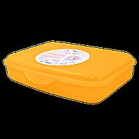 Контейнер универсальный 20х20х8 см Алеана 168018