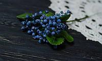 Ветка ягод голубых