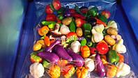 Набор декоративных овощей