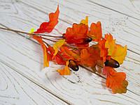 Листья дуба с желудями осенние