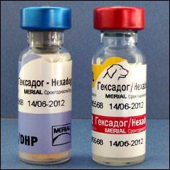 Гексадог 1фл(1 доза)+растворитель