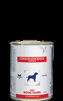 Royal Canin convalescence support диета для собак в период восстановления после болезни
