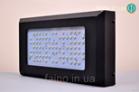 Фитосветильник светодиодный Bellson 240 Вт
