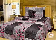 Двуспальное постельное белье Лиса 42