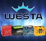Аккумуляторный завод Westa (Веста) Украина, г. Днепр