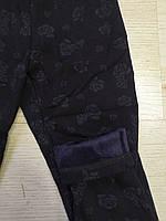 Лосины на меху для девочек оптом, Seagull, 8-16 лет.,арт. CSQ-017, фото 6