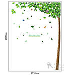 Інтер'єрна наклейка на стіну - велике Зелене дерево (відмінна якість), фото 3