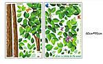 Інтер'єрна наклейка на стіну - велике Зелене дерево (відмінна якість), фото 4