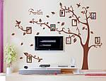 Интерьерная наклейка на стену - Дерево с фоторамками коричневое (отличное качество), фото 5