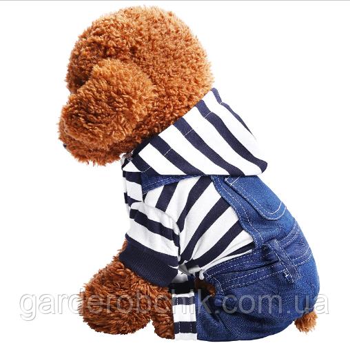 """Комбинезон, костюм  с кофтой """"Морячок"""" для собаки. Одежда для собаки"""