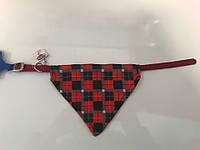 Ошейник нейлоновый с галстучком Trixie, XS, TX-30863