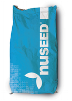 Семена подсолнечника NUSEED N4LM408