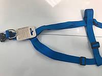 Шлея нейлоновая для собак Collar Dog Extreme