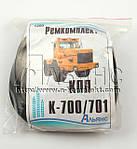 Ремкомплект КПП К-700/701 (без манжет)  (арт.1200), фото 2