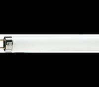 Лампа L 36w/76 OSRAM